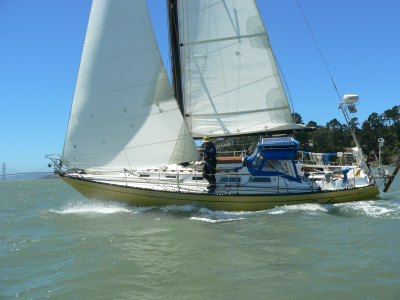 These photos show the Westsail 32 , Velella , in the yard in Port ...